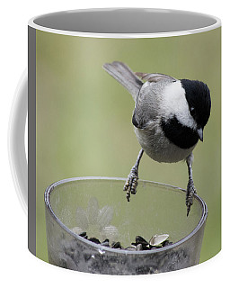 Little Bird Looking For A Handout Coffee Mug