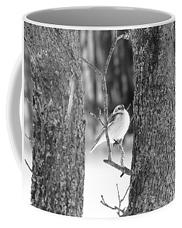 Coffee Mug featuring the photograph Little Bird by Rick Morgan