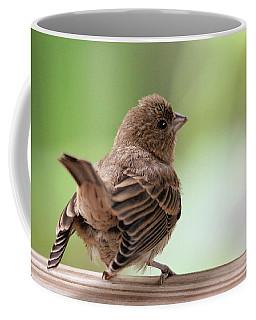 Coffee Mug featuring the photograph Little Bird by Trina Ansel