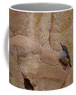 Coffee Mug featuring the photograph Little Bird Upon The Cliff Face by Debby Pueschel