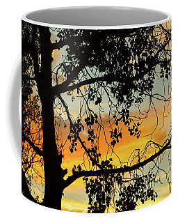 Coffee Mug featuring the photograph Little Birdie Told Me So by James BO Insogna