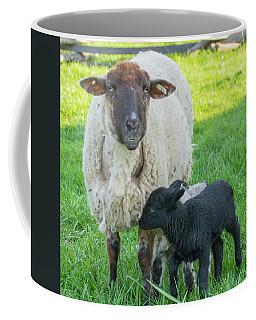 Little Black Sheep Coffee Mug