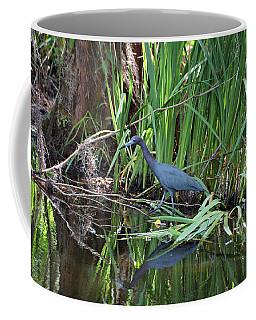 Coffee Mug featuring the photograph Little Blue Heron by Sandy Keeton