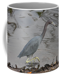 Coffee Mug featuring the photograph Little Blue Heron Walking by Christiane Schulze Art And Photography