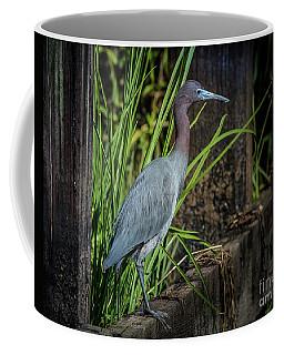 Little Blue Under Bridge Coffee Mug