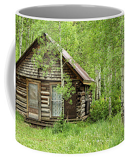 Little Cabin And Outhouse Coffee Mug