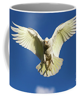 Little Corella Descending Coffee Mug