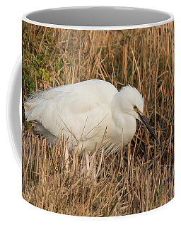 Little Egret Concentrating Coffee Mug