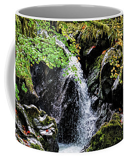 Coffee Mug featuring the photograph Little Falls by Michael Hope