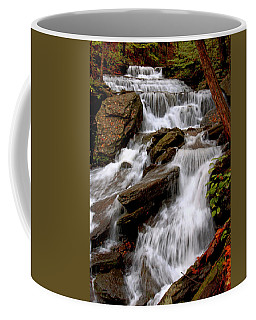 Coffee Mug featuring the photograph Little Four Mile Run Falls by Suzanne Stout