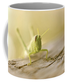 Little Grasshopper Coffee Mug by Claudia Ellis