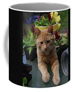 Little Helper Coffee Mug
