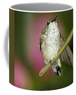 Little Humming Bird Coffee Mug