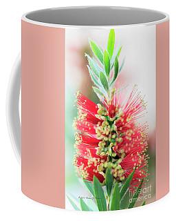 Little John Dwarf Bottlebrush Bloom Coffee Mug