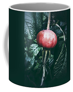 Little Lady Rosehip Coffee Mug by Karen Stahlros