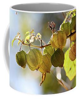 Little Lanterns Coffee Mug