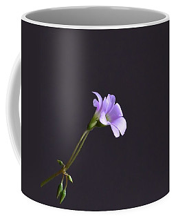 Little Lavender Flowers Coffee Mug