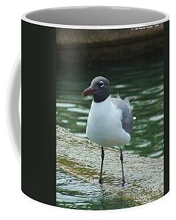Little Man Coffee Mug