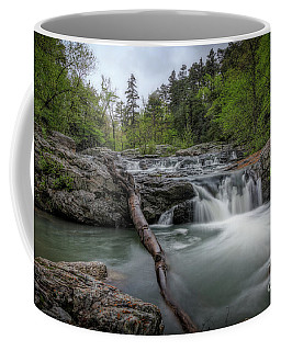 Little Missouri Falls 3 Coffee Mug