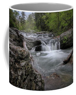 Little Missouri Falls Coffee Mug