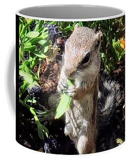 Little Nibbler Coffee Mug