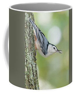 Little Nutty Bokeh Coffee Mug
