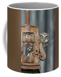 Little Owl Peeking Coffee Mug