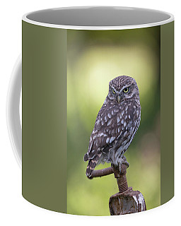 Little Owl Pipe Bender Coffee Mug