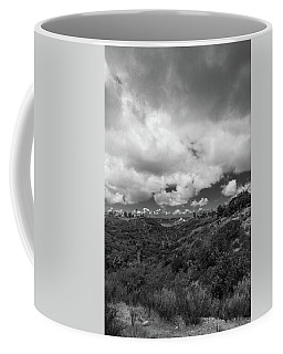 Little Palm Canyon Coffee Mug