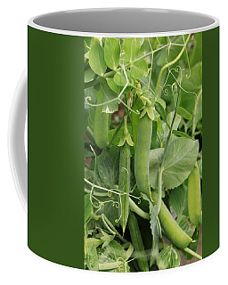Coffee Mug featuring the photograph Little Peas Of Summer by Rick Morgan