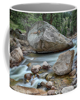 Coffee Mug featuring the photograph Little Pine Tree Stream View by James BO Insogna