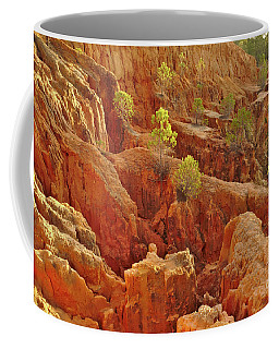 Little Pine Trees Growing On The Valley Cliffs Coffee Mug