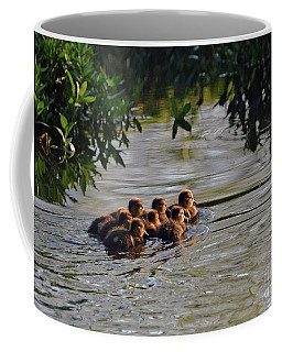 Coffee Mug featuring the photograph Little Quackers Looking For Mama by Debby Pueschel