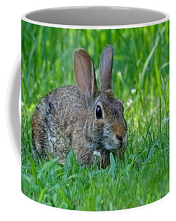 Little Rabbit Frou Frou Coffee Mug