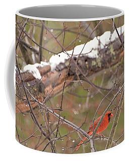 Little Red Bird Coffee Mug