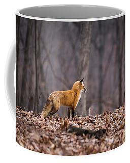 Little Red Fox Coffee Mug by Andrea Silies