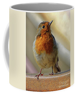 Little Robin Redbreast Coffee Mug