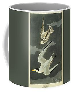 Little Tern Coffee Mug