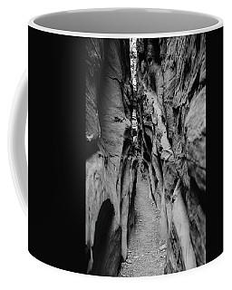 Little Wild Horse Canyon Bw Coffee Mug
