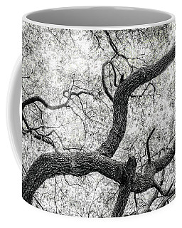 Live Oak Abstract 1 Coffee Mug