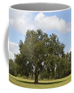 Live Oak - All Alone Coffee Mug