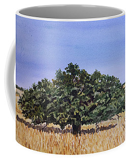 Live Oak Coffee Mug