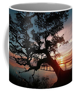 Coffee Mug featuring the photograph Live Oak Sunrise by Benanne Stiens
