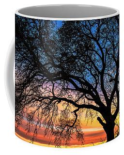 Live Oak Under A Rainbow Sky Coffee Mug