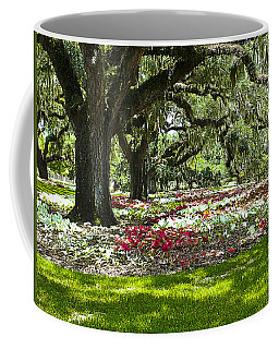 Coffee Mug featuring the photograph Live Oaks At Brookgreen Gardens by Bill Barber