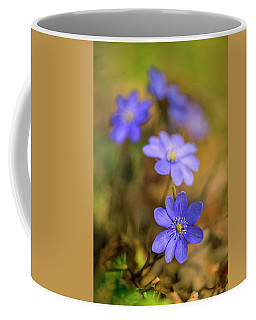 Coffee Mug featuring the photograph Liverworts In The Afternoon Sunlight by Jaroslaw Blaminsky