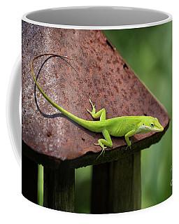 Lizard On Lantern Coffee Mug by Stephanie Hayes