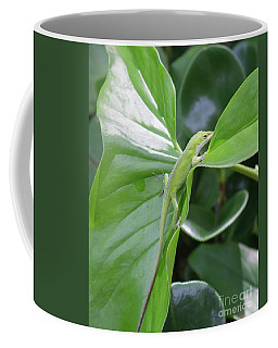 Lizard Waimea Trail Coffee Mug