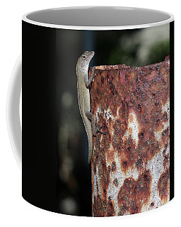 Coffee Mug featuring the photograph Lizzy by Richard Rizzo