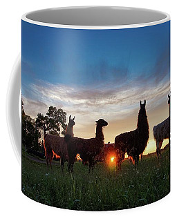 Llamas At Sunset Coffee Mug
